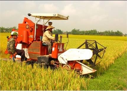 Phê duyệt Đề án Áp dụng cơ giới hóa trong nông nghiệp