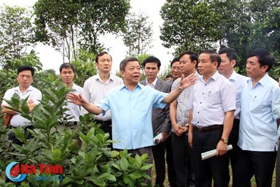 Ngày thứ 7 cho nông thôn mới Hà Tĩnh